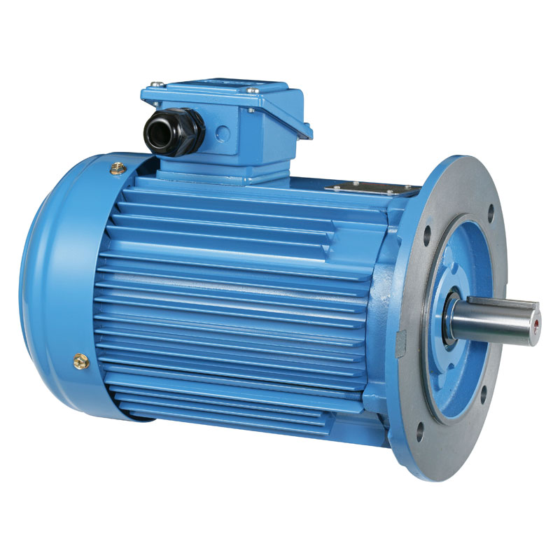 CharacterInduction List of Induction motor