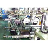Screw Counting and Box Sealing Machine