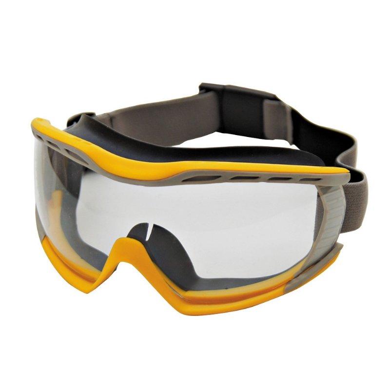 Vision Goggle