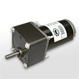 Spur Gear Motor