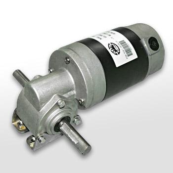 Worm Gear Motor