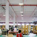 LED Bay Light (CamberRay) Provider