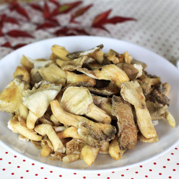 Snacks of Pleurotus sajor-caju (Oyster mushroom)