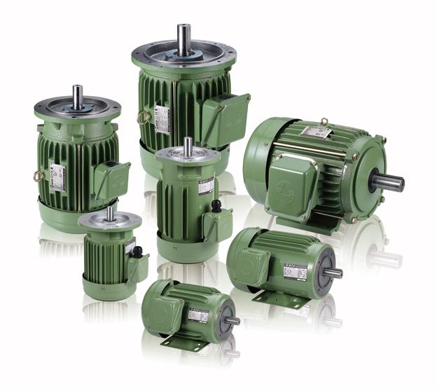 IE3 V3 Induction Motors